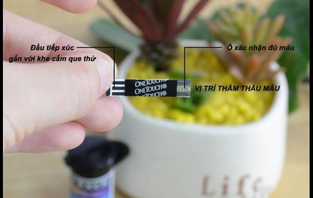 Gắn đúng chiều kim theo hướng dẫn cách sử dụng máy đo đường huyết One Touch Ultra để có kết quả chính xác
